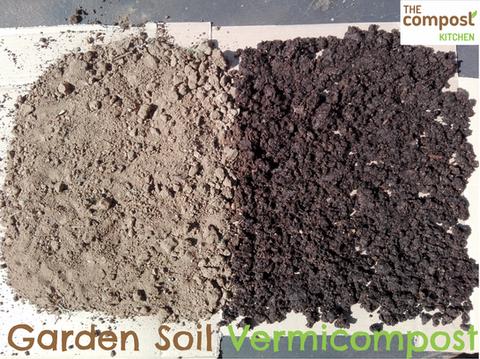 Soil vs Vermicompost.png