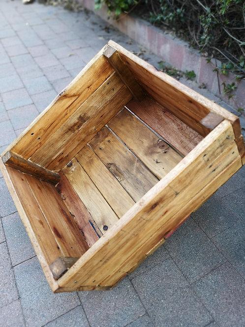 Home Vegetable Box 50x50cm