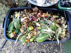 Compost Kitchen Food Waste.jpg