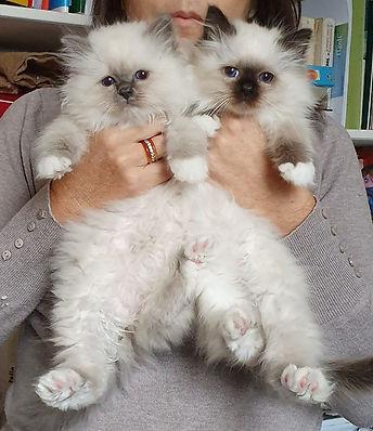 My deux  princesses 😍😍😍😍😍.jpg