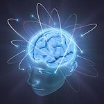 bigstock-Vivid-Brain-3646646.jpg