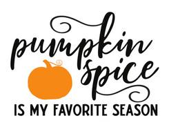 14x19 Pumpkin Spice Favorite Season.jpg