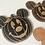 Thumbnail: Pumpkin Coaster - Individual
