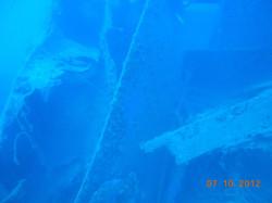 Pavia, PADI, sub, corsi, diving, imm
