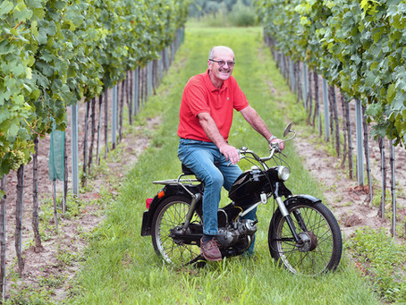 Weingarteninspektion