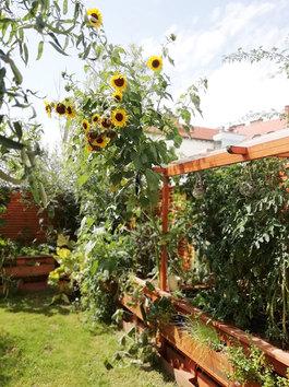 Garten - Haus der Creationen