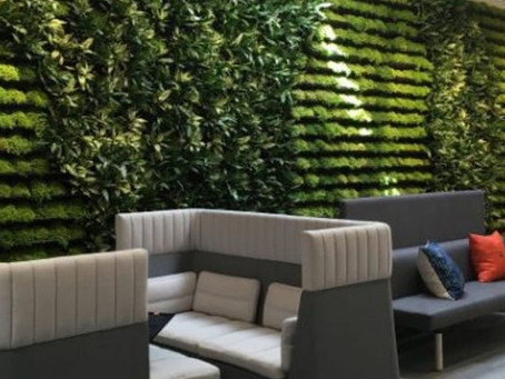 Biophilic Design for the Love of Life