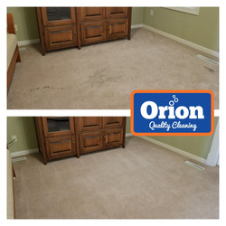 best carpet cleaning in twin cities minnesota