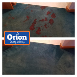 blood removal cleaning services