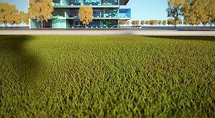 vray-sketchup-grass.jpg