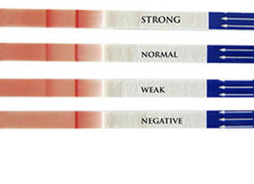 LABTEST CAT Labformat bloodtyping A,B,AB