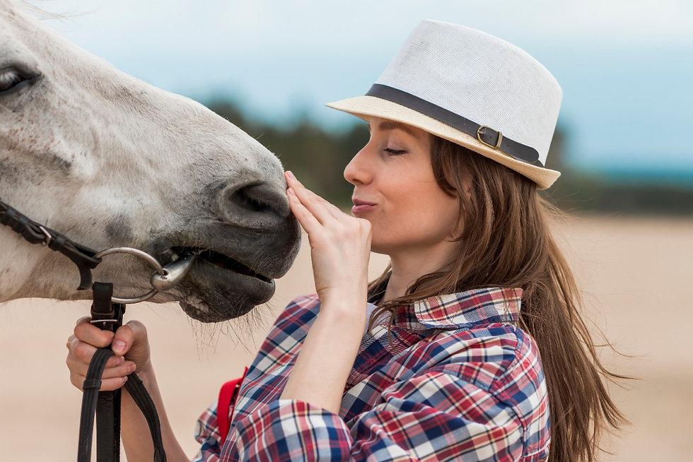 cavalo.jpeg