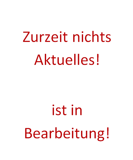 in Bearbeitung.png