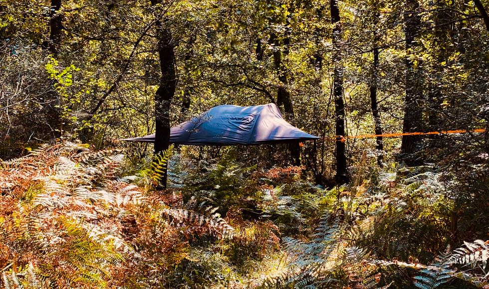 tenda-sospesa-nel-bosco