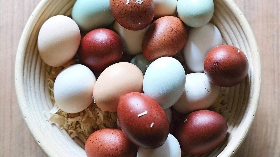 Egg Subscription