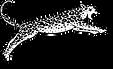 Jaguar Coiffeur Scheren Logo