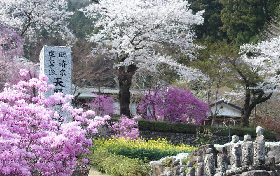 Ryushuin_02.JPG