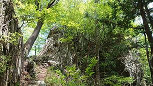 Hiking_01.JPG