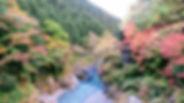 Hatonosu_02.JPG