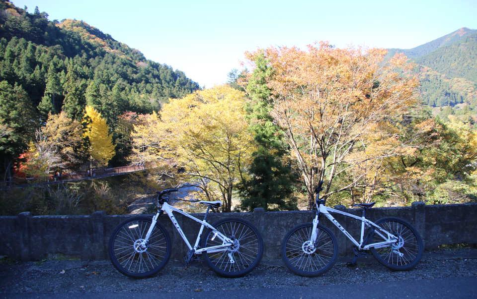 サイクリング_Tyler.JPG