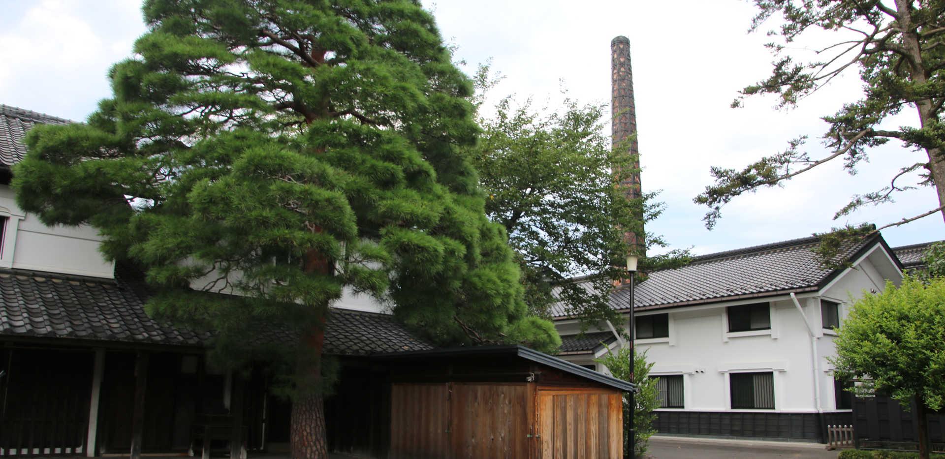 Tamura_02.JPG