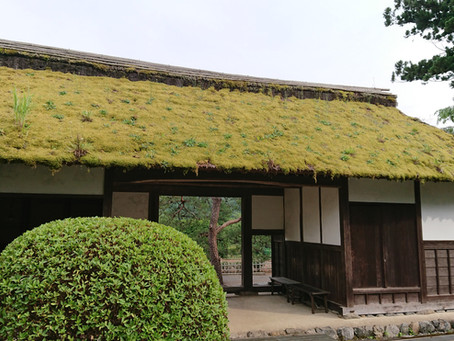 """Anrakuji Temple"" Historic Temple with Beautiful Views"