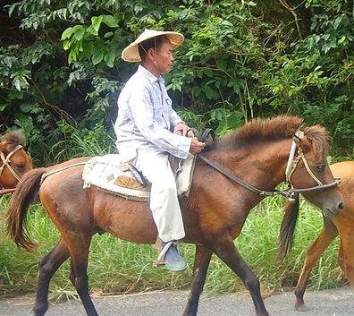 クバ笠被って乗馬