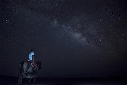 星を見ながら乗馬