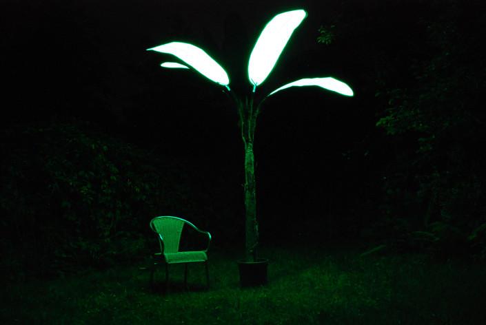 Solar Palm