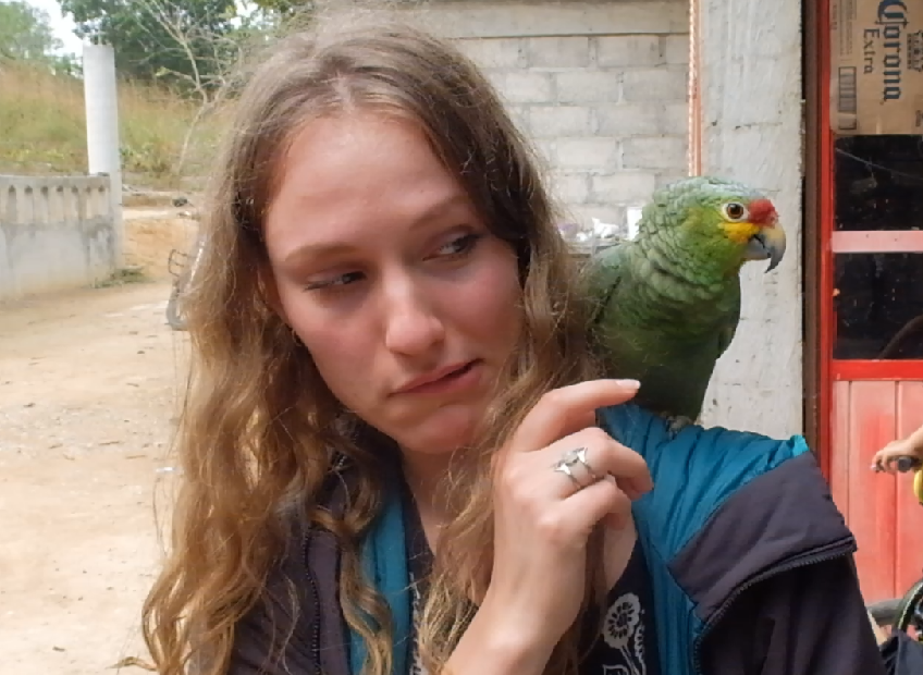 Making friends with the local parrot