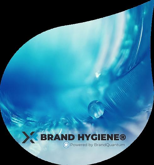 BrandHygiene03.png