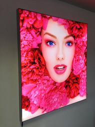 Frame 59 Light Box.jpg