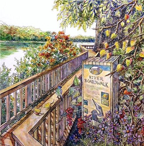 Ijams Nature Center Boardwalk