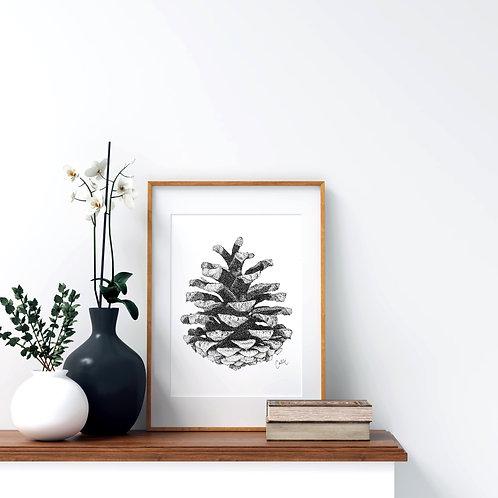 Pinecone Print