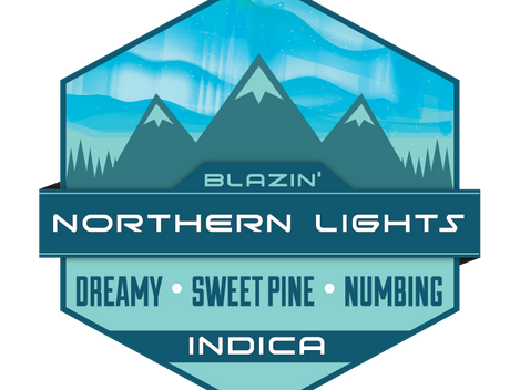 A Review of Northern Lights by Trail Blazin' Productions