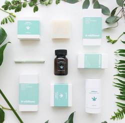Wildflower Wellness CBD products