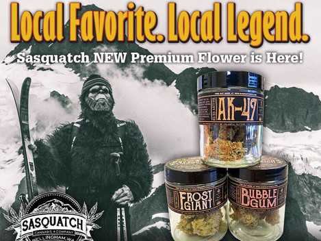Sasquatch Cannabis Company: Local Legends Back with Premium Flower