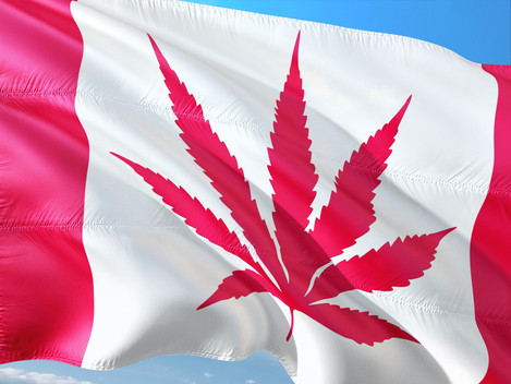 A Guide to Canadian Cannabis