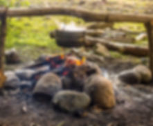 campfire-outdoor-survival-tips.jpg