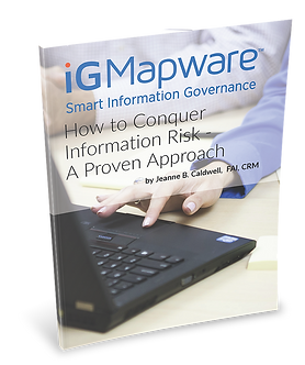 White Paper on Information Risk and Records Management Compiance