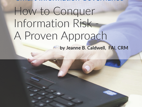 How to Conquer Information Risk