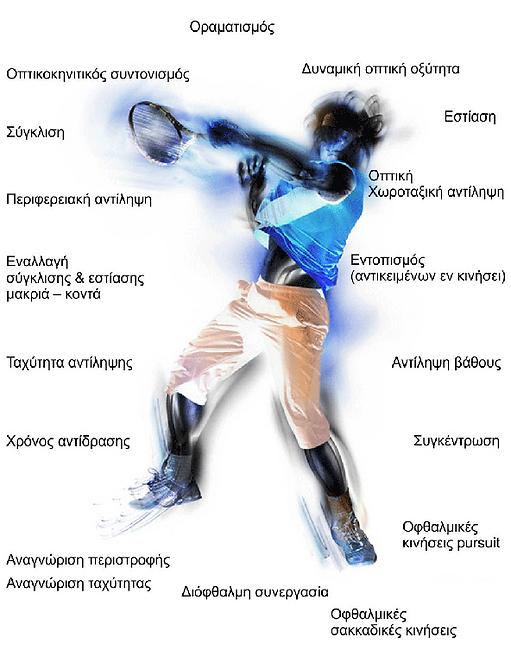 Σύγκλιση, εστίαση,εντοπισμός,αντίληψη βάθους,συγκέντρωση,Οφθαλμικές κινήσεις pursuit