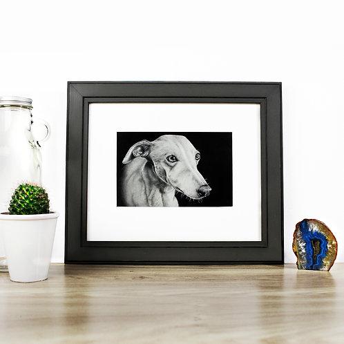Greyhound - Original