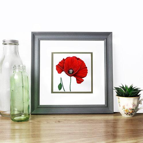 Poppy - Original
