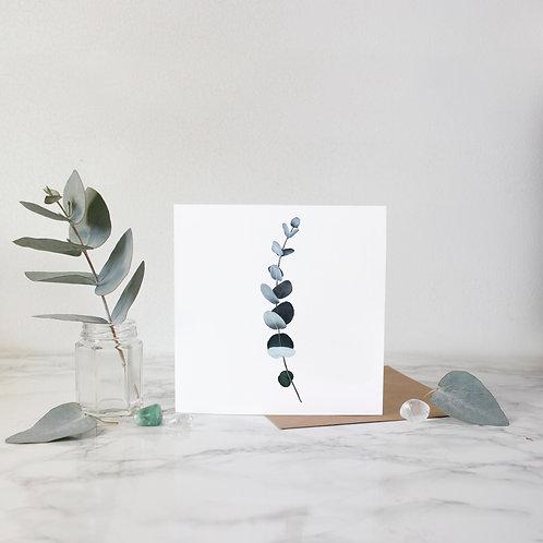 Eucalyptus - Greeting Card