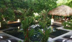 The infinity pool and garden...