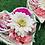 Thumbnail: 【送料込】ピーチハート アーティフィシルフラワー・造花
