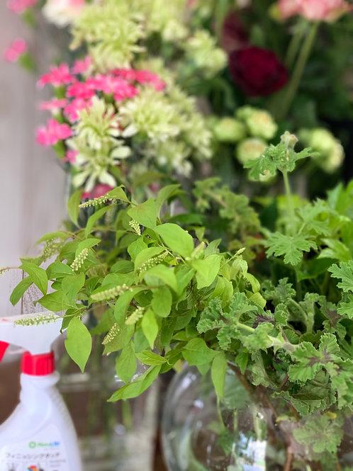 母の日 初川様専用 花材束