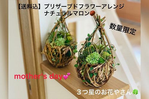 【送料込】アーティフィシャルフラワー・造花 アレンジ マロン🌰