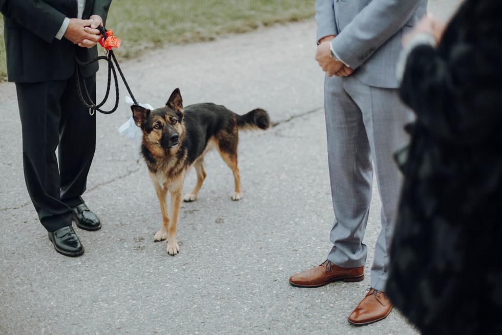 Hochzeitsfotografie Pia Simon   Hochzeitsfotograf   Bayern